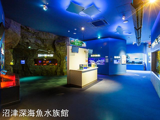 ◆沼津港深海水族館