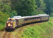 わたらせ渓谷鉄道 トロッコ列車  ※イメージ