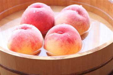 【神奈川県内・町田発着】「桃の女王」と呼ばれる高級品種白桃ドドンと2箱付!甲州白桃狩り食べ放題<添乗員同行>