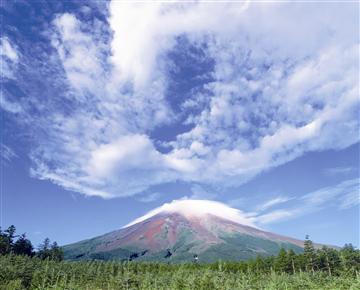 【相模大野・町田発】 ★Bコース:富士山五合目★ とうもろこし狩り&桃狩り&ランチバイキング