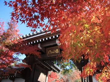 京都「南禅寺・永観堂・京都御所・旧三井家下鴨別邸」をまわる