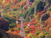 小豆島 寒霞渓ロープウェー ※イメージです。