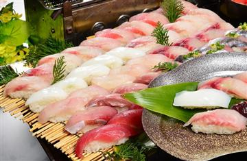 房州地魚のお寿司食べ放題&三井アウトレットパーク木更津でお買い物!インスタ映え抜群の濃溝の滝立ち寄りも!「見る」「食べる」そして「買う」。お楽しみ満載、南房総いいとこどりの日帰りバスツアー