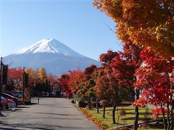 横浜発日帰り【紅葉めぐり 河口湖紅葉まつり&富士山五合目散策】秋深まる山梨で世界文化遺産「富士山」と紅葉を手軽に楽しむ!富士山を望む人気の紅葉スポットでたっぷり富士山と紅葉を楽しもう。ほうとう定食の昼食付。