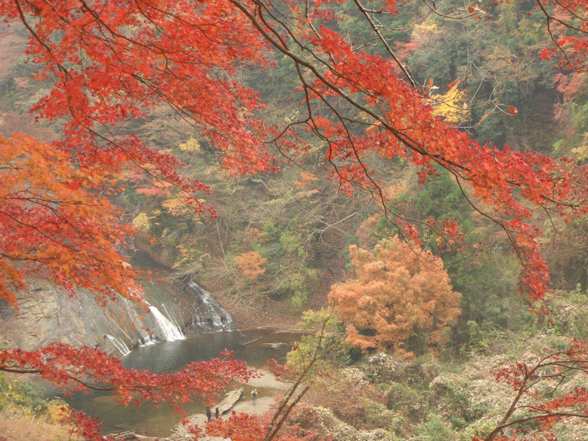 養老渓谷 粟又の滝