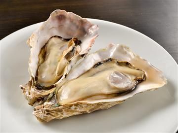 【京都発着】的矢の料理旅館で食す!牡蠣フルコース<添乗員同行>