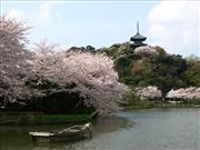 横浜三溪園 ※イメージ 画像提供:三溪園