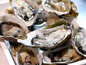 【高知県内発着】旅のすごろく市12月 炭火焼き牡蠣食べ放題と五味の市年末の買出し日帰り 2018年12月<添乗員同行>