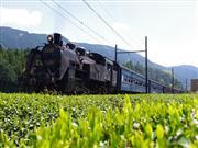 大井川鉄道※イメージ 画像提供:大井川鐵道株式会社