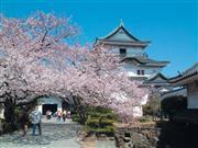 和歌山城(イメージ)