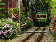 江ノ島電鉄※イメージ 画像提供:鎌倉市観光協会