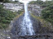 那智の滝 画像提供:那智勝浦町観光協会 ※イメージ