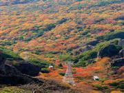 寒霞渓ロープウェイ 画像提供:小豆島総合開発株式会社 ※イメージ