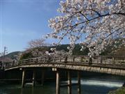 嵐山 ※イメージ