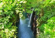 まぶしい緑に覆われた高千穂の絶景 ※イメージ