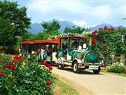 バラの回廊※イメージ 画像提供:ハイジの村