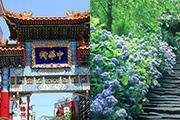横浜中華街と明月院のあじさいイメージ