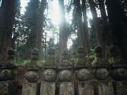 高野山※イメージ 画像提供:和歌山県