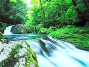 菊池渓谷 ※イメージ