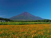 富士山 ※イメージ