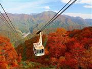田代ロープウェ※イメージ 画像提供:かぐらスキー場
