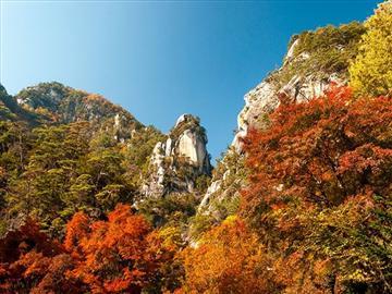 【静岡県中部・東部地区発着】絶景紅葉の昇仙峡ロープウェイと秘境野猿渓谷<添乗員同行>