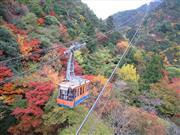 ロープウェイ 画像提供:神戸すまいまちづくり公社 ※イメージ