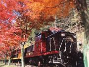 嵯峨野トロッコ鉄道※イメージ 画像提供:嵯峨野観光鉄道