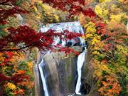 袋田の滝※イメージ 画像提供_大子町役場  観光商工課