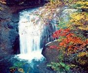 白糸の滝 ※イメージ