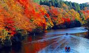 亀山湖紅葉クルーズ(12月頃) ※イメージ