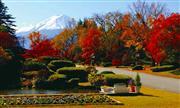 富士ビューホテル庭園(11月頃) ※イメージ