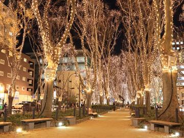 【山形県内陸地区発着】よみうり松島カキ祭りSENDAI光のページェント<添乗員同行>