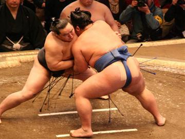 【高知県内発着】椅子S席で観る「大相撲大阪場所」観戦日帰り<添乗員同行>
