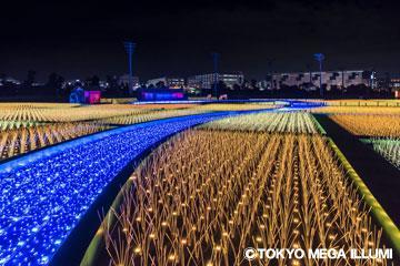 【松戸発】世界最高峰!関東最大級約800万球の超大型イルミネーションイベント【東京光の大祭典&イルミネーションクルーズ 】
