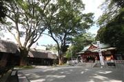 樹齢2000年を超える「天然記念物・大楠」は人気のパワースポットです。 ※来宮神社 イメージ