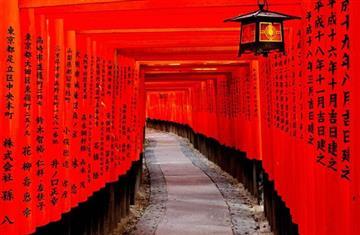 京都・奈良の観光名所を1日で楽しむ!【外国人観光客と一緒に楽しむ】関西周遊バスツアー ★外国人観光客に大人気の伏見稲荷大社、嵐山、金閣寺 をはじめ、京都・奈良の有名観光地を周遊プラン。