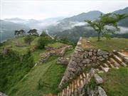 竹田城跡※イメージ 画像提供:吉田利栄