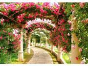 ハイジの村・バラの回廊(6月頃) ※イメージ