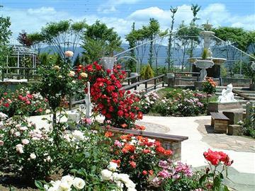 ★花咲く庭園『ハーブ庭園散策』