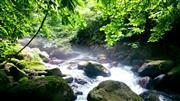 神秘の湧水 尚仁沢湧水をハイキングにて歩きます。   ※イメージ