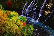 白ひげの滝(イメージ)