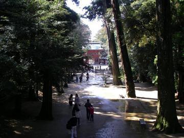 鹿島神宮の参道 画像提供;一般社団法人 茨城県観光物産協会