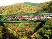 箱根登山列車