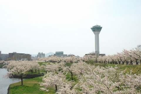 五稜郭タワー ※イメージ
