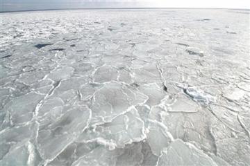 一度は見てみたい一面の流氷