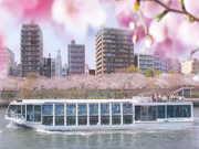 隅田川桜クルーズ(イメージ)