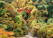松川渓谷 ※イメージ